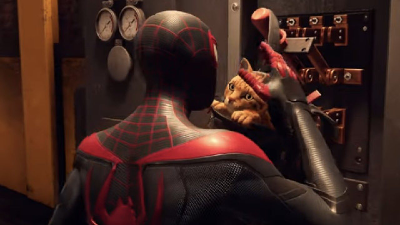 Spider Cat en Spider-Man: Miles Morales