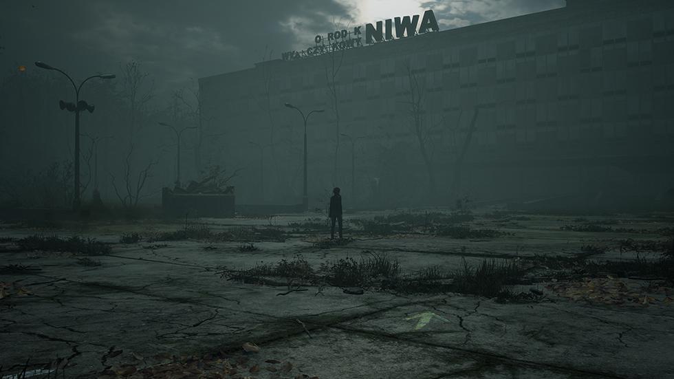 The Medium Niwa